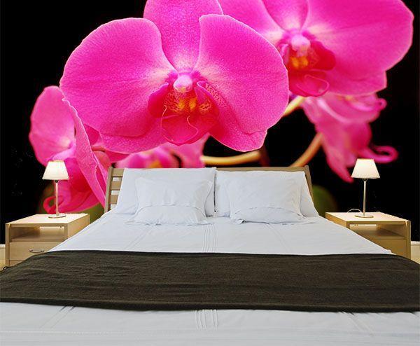 sypialnia storczyk