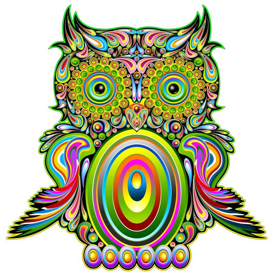 Owl Psychedelic Pop Art Design-Gufo Psichedelico Decorativo