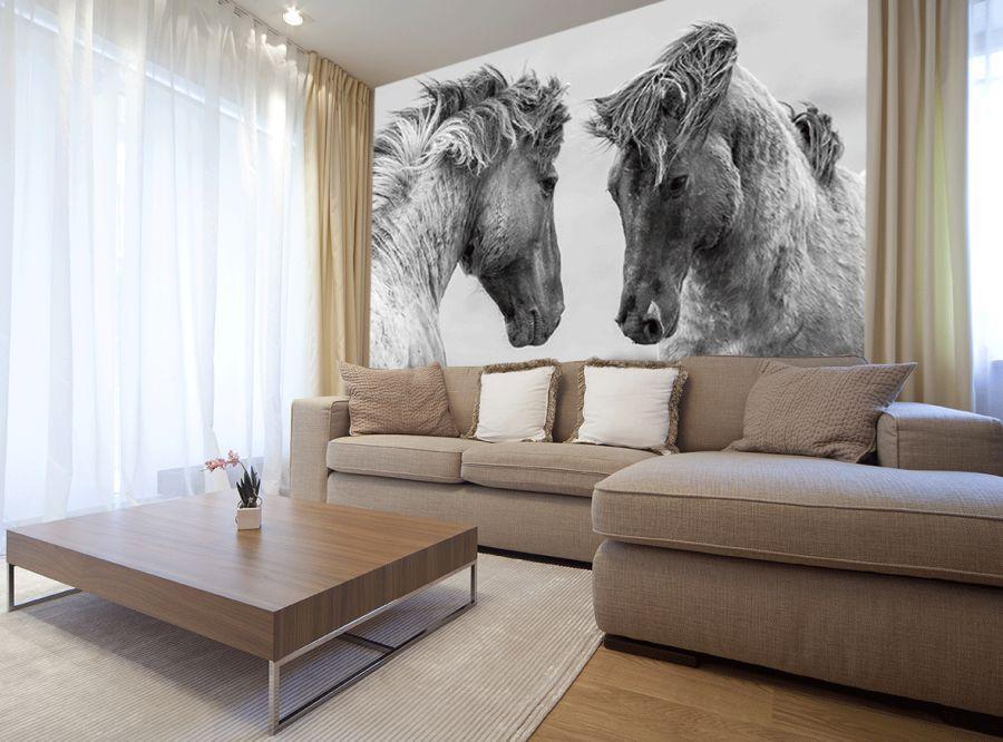 fototapeta z koniem