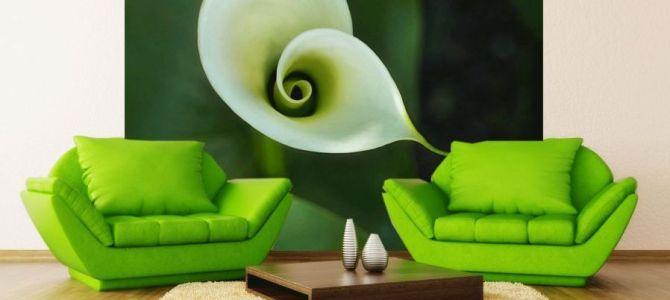 Zielono mi – tanie fototapety na wiosnę