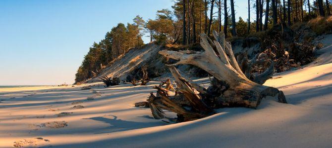 Plaża i morze – fototapety w wakacyjnym klimacie