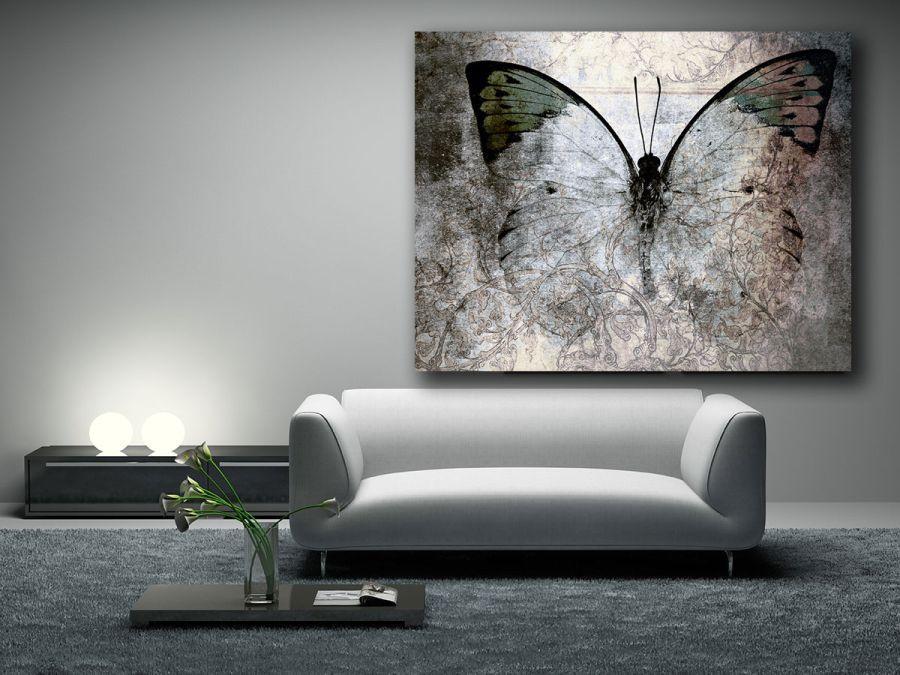 Motyle-4