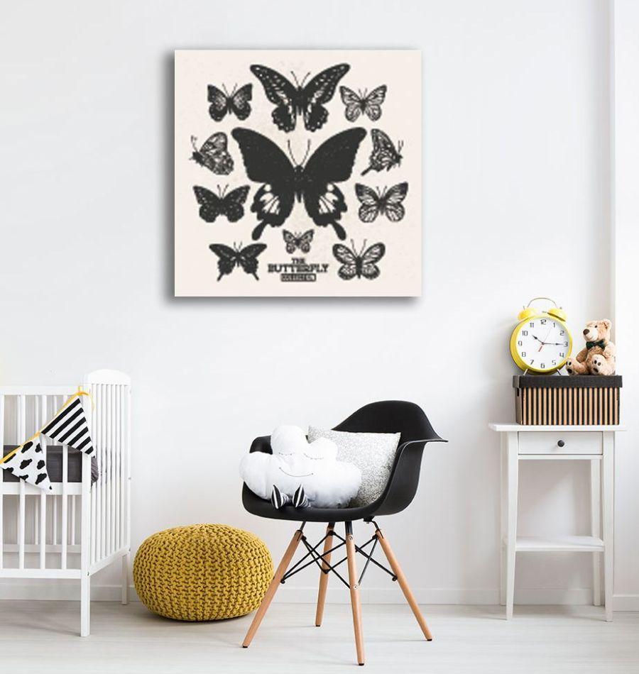 Motyle-3a